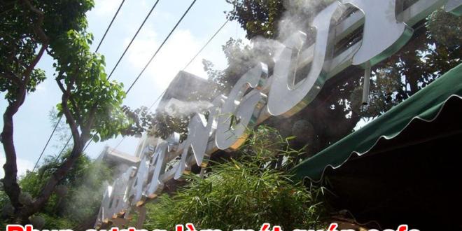 hinh-thuc-te-phun-suong-quan-cafe