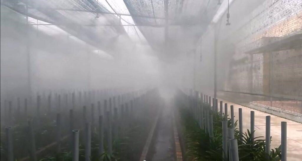 máy phun sương